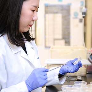 a student conducting research in a lab