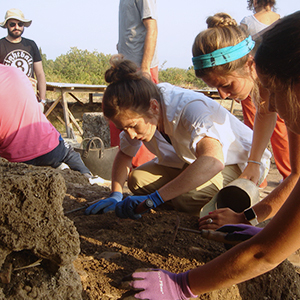 anthropology students participate in a dig at a local site