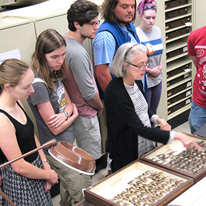 a group of museum studies students looking at items in the UA Museums' collections