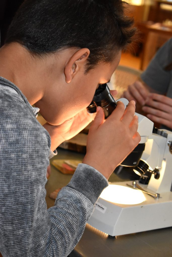 a girl looking into a microscope