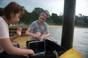 Dr. Dimova and a doctoral student check monitoring stations in Mobile Bay